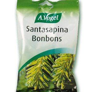 BONBON SANTASAPINA 100G/24 BIOFO -0
