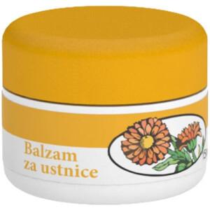 FAVN BALZAM ZA USTNICE 15ML -0