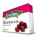 BRUSNICA 4.0X 2G TBL 16X ENCI -0