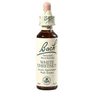 Bachova esenca - divji kostanj z belimi cvetovi , 20 ml-0