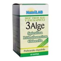 3 Alge
