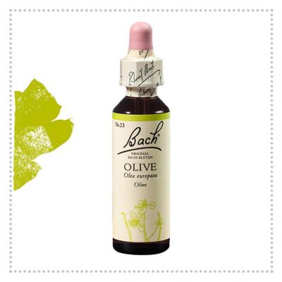 Bach Esenca št. 23 Olive (oljka), 20 Ml Kapljice
