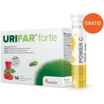Urifar-FORTE-14-vreck-3D-in-powerC