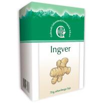 Ingver